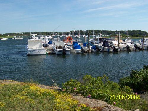 Wellfleet Harbor, Summer