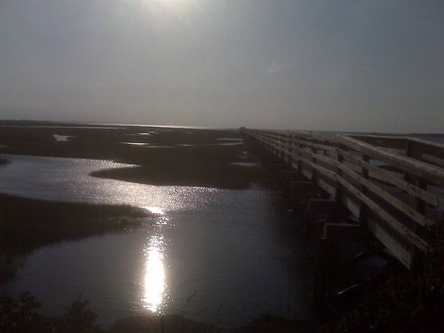 Boardwalk and marsh in Yarmouth Port, Summer